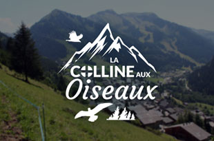 Chalet La Colline aux Oiseaux - rent chatel apartment, housing chatel, chatel rent apartment, rent chalet chatel private person